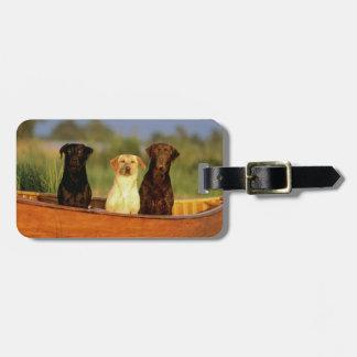 Jaga hundar bagagebricka