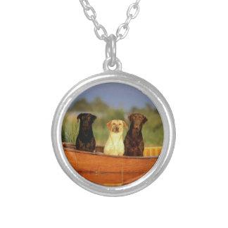 Jaga hundar silverpläterat halsband