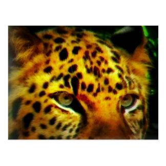 Jaguarögon Vykort