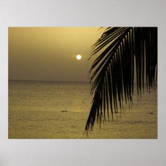Jamaikansk solnedgångaffisch poster