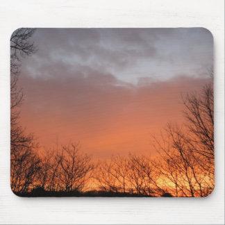 Januari soluppgång mus matta