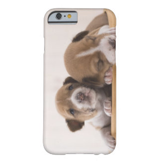 Japan Barely There iPhone 6 Skal