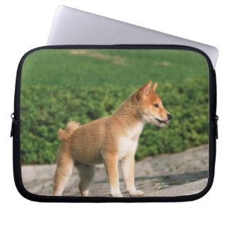 Japansk dvärgliknande person Shiba 2 Laptop Fodral