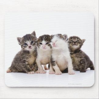 Japansk katt musmattor