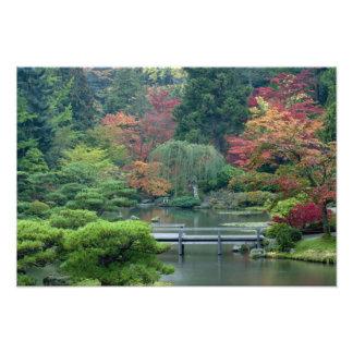 Japanträdgården på Washington parkerar Fototryck