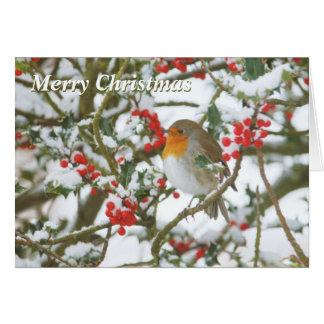 Järnek & Robin julkort Hälsningskort
