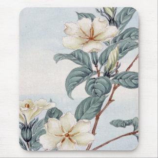Jasminen blommar (japansk konst för vintage) mus mattor