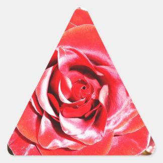 Jordanienröd ros 2 triangelformat klistermärke