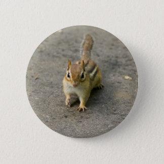 Jordekorren knäppas standard knapp rund 5.7 cm