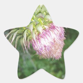 Jordgubbeogräs Stjärnformat Klistermärke