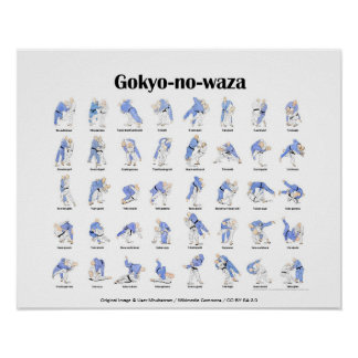 Judokast Poster