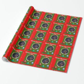 Jul för Spaniel för engelsk leksak Presentpapper