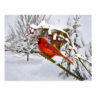 Jul huvudsaklig fågel, snö, vykort