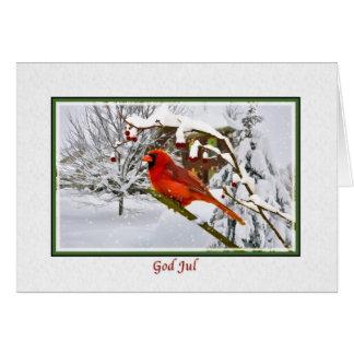 Jul norrman, huvudsaklig fågel, snö, kort