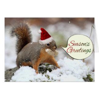 Julaftonekorre i snö hälsningskort