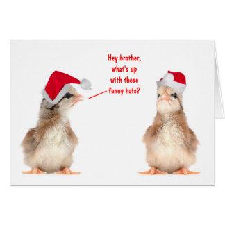 Julchickar Hälsningskort