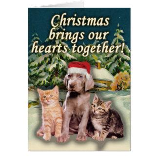Julen kommer med våra hjärtor tillsammans valpkat