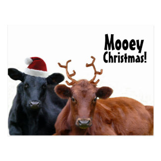 Julhelgdagkor i den Santa hatten och horn på Vykort