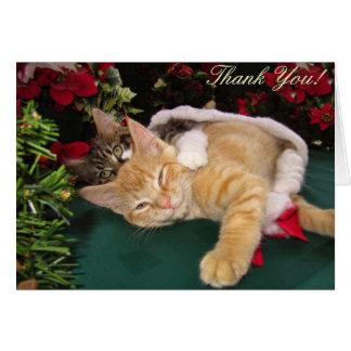 Julkatter, gulliga kattungar som kramar, hälsningskort