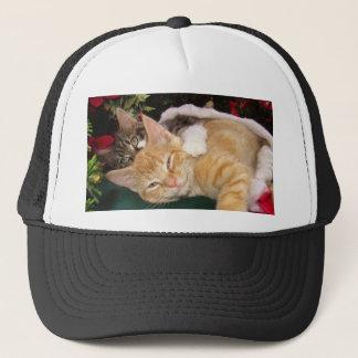Julkatter, gulliga kattungar som kramar, truckerkeps