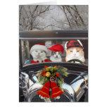 Julkatter i bil