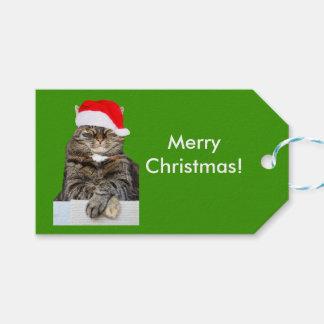 Julkattfoto i märkre för Santa hattgåva Presentetikett