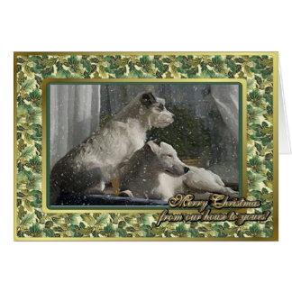 Julkort för hund för jackRussell Terrier tom Hälsningskort