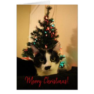 Julkort - Lola 2 Hälsningskort