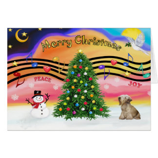 Julmusik 2 - Cesky Terrier (ljust kaffe) Hälsningskort