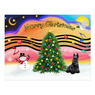 Julmusik 2 - skotsk Terrier Vykort