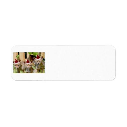 Julprärievargvalper Returadress Etikett