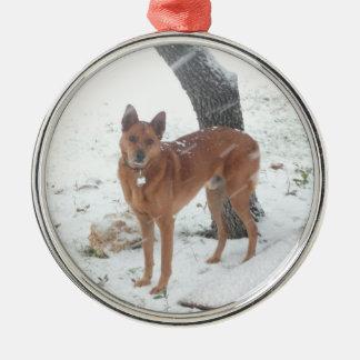 Julsamlingen tillfogar husdjur- eller familjfotoet julgransprydnad metall
