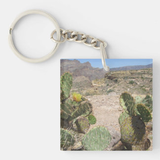 Kaktus för utsikt för fiskbäckbacke Prickly