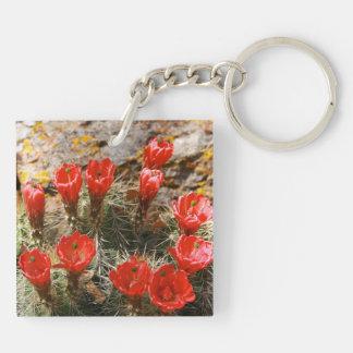 Kaktus med härliga röda blom fyrkantigt dubbelsidigt nyckelring i akryl