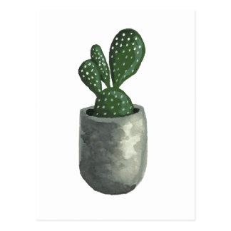 Kaktus Vykort