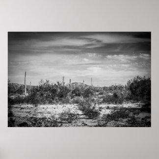Kaktusen landskap print