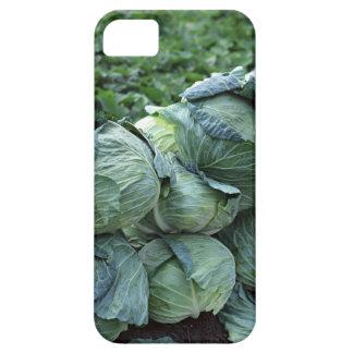 Kål iPhone 5 Fodraler