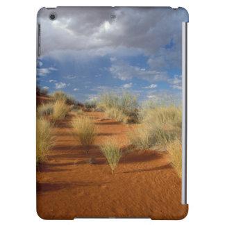 Kalahari ökenplats, Kgalagadi Transfrontier 2