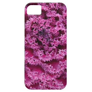 Kale iPhone 5 Case-Mate Cases
