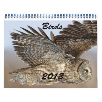Kalender 2013 av fåglar