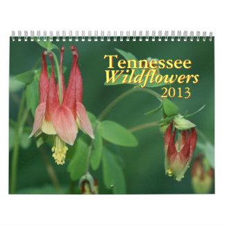 Kalender för Tennessee vildblommar 2013
