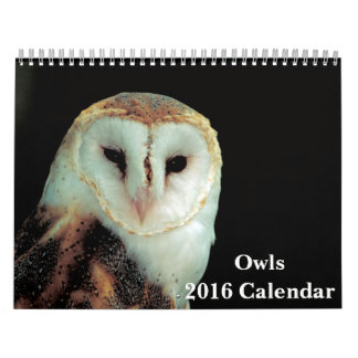 Kalender för ugglor 2016