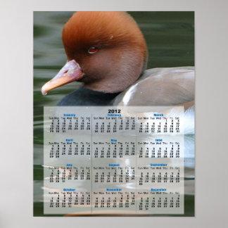 Kalender för vildanka 2013 poster