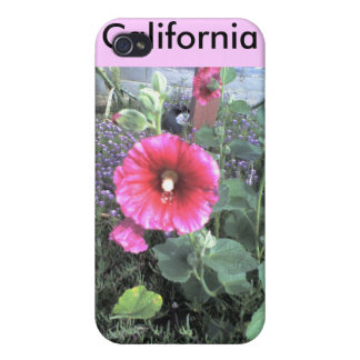 Kalifornien blomma iPhone 4 skal