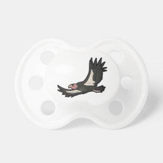 Kalifornien Condor Napp
