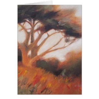 Kalifornien Monterey Cypress träd Hälsningskort