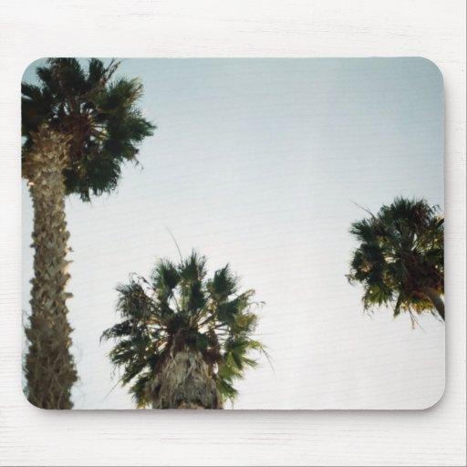 Kalifornien palmträd musmattor