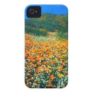 Kalifornien vallmo- och Popcornvildblommar iPhone 4 Case-Mate Skydd