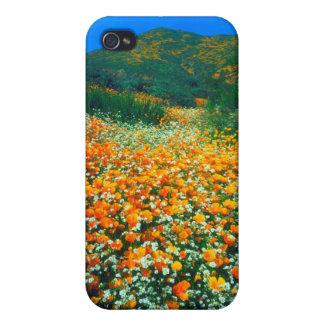 Kalifornien vallmo- och Popcornvildblommar iPhone 4 Fodraler
