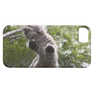 kalispell montana, USA iPhone 5 Skydd